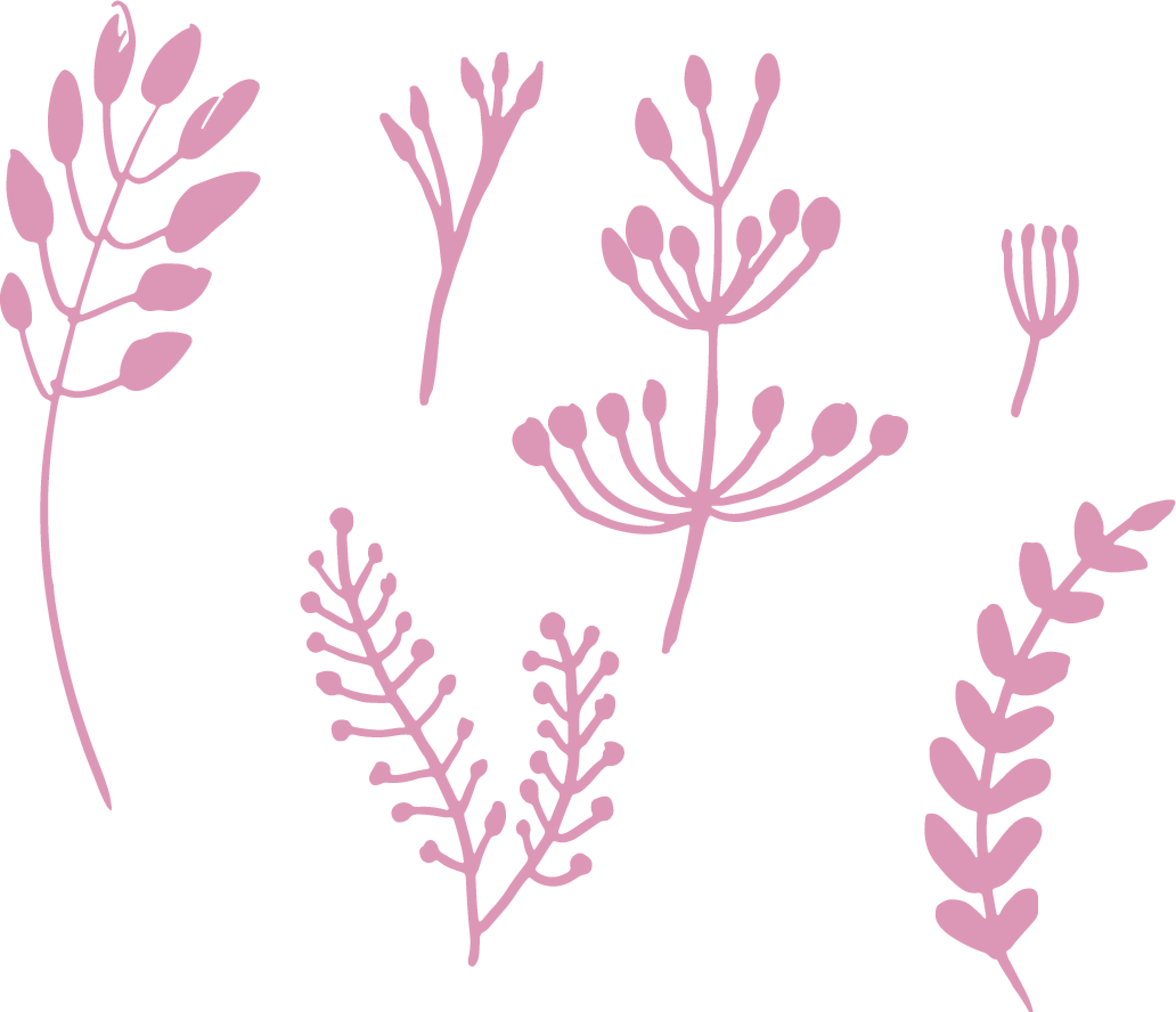 plants@2x